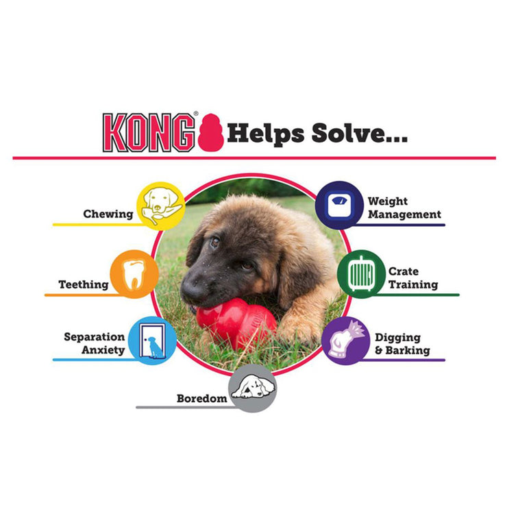 Kong® Senior Treat Dispenser | Pawlicious & Company