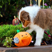 Pumpkin Halloween Burrow Dog Toy