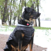 Weather Puffer Dog Coat - Black | Pawlicious & Company