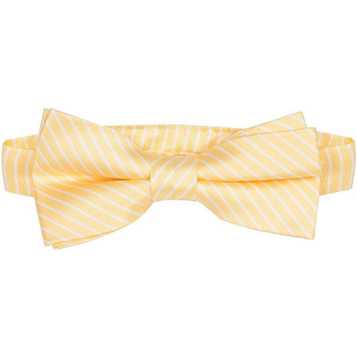 BT-1  Yellow and White Stripes