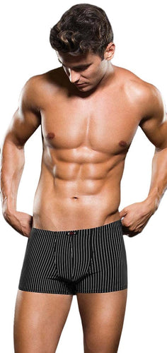 Sexy Microfibre Black and White Pinstripe Boxer For Men Front Image