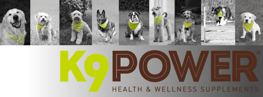 K9 Power Product Updates