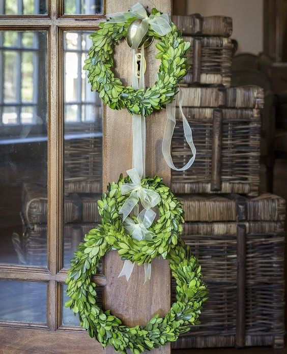 Boxwood Wreath Trio with Ribbon