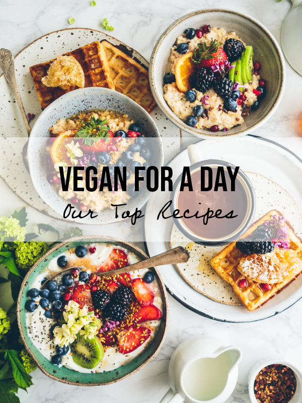 Vegan For A Day - Our Top Recipes