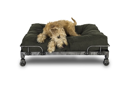 Pet Bed Wheely