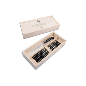 6 piece Steak Knife Set, Black Plexiglass