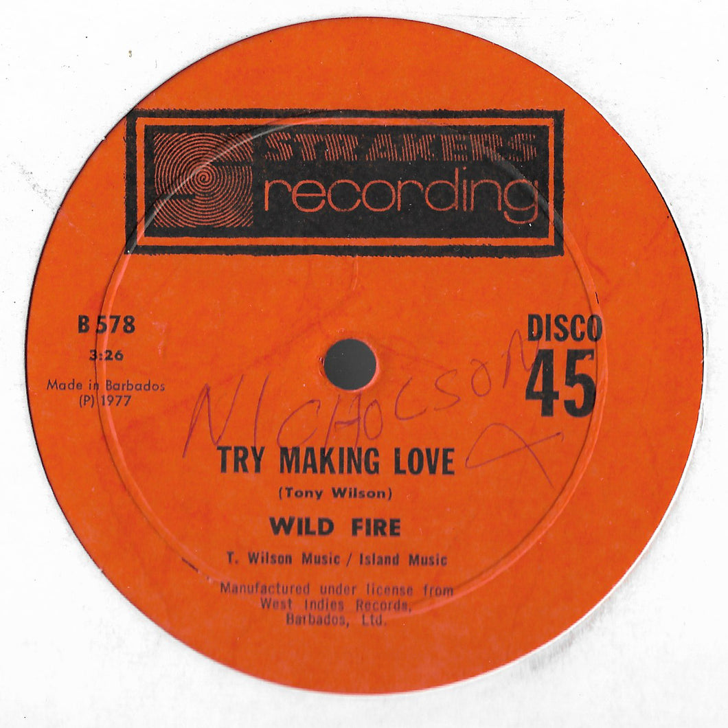 Wild Fire - Try Making Love (12