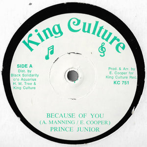 Prince Junior / Prince Allan - Because Of You / Stop Running