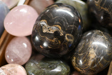 Stromatolite Palm Stone - The World's OLDEST Fossil!
