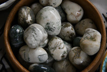 Tree Agate (Tumbled)