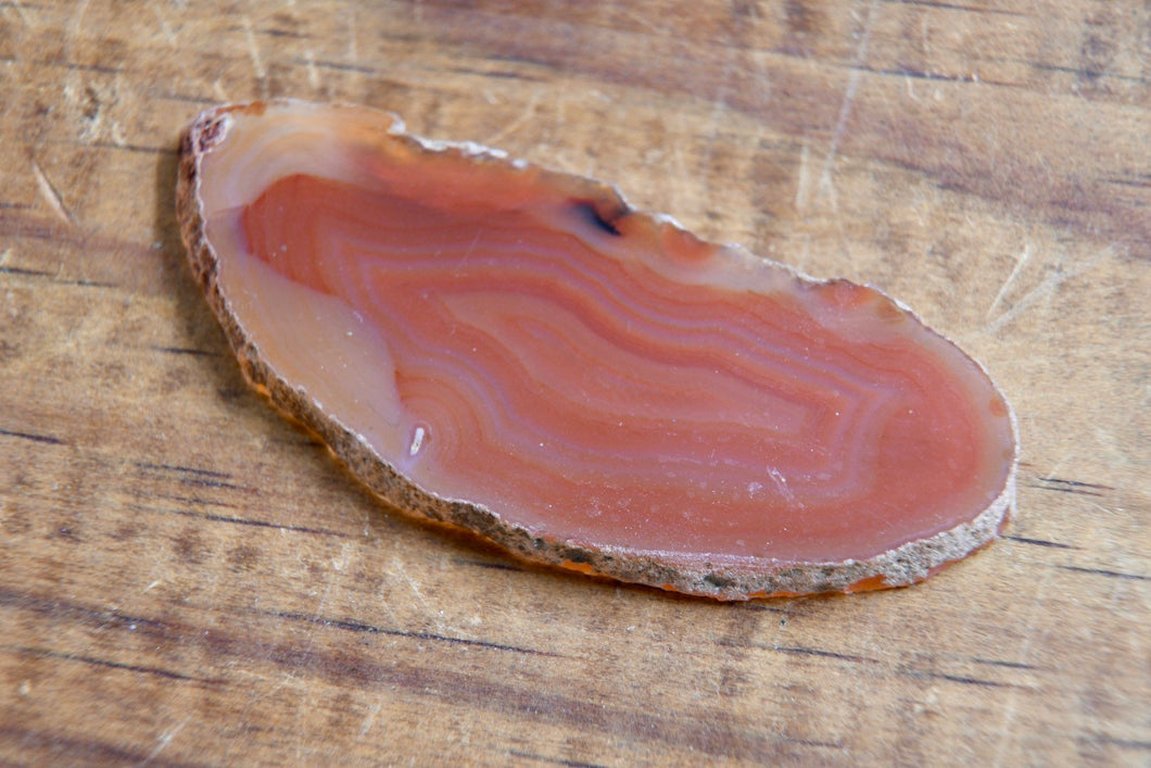 "Brown Agate Slice (1""-2"")"