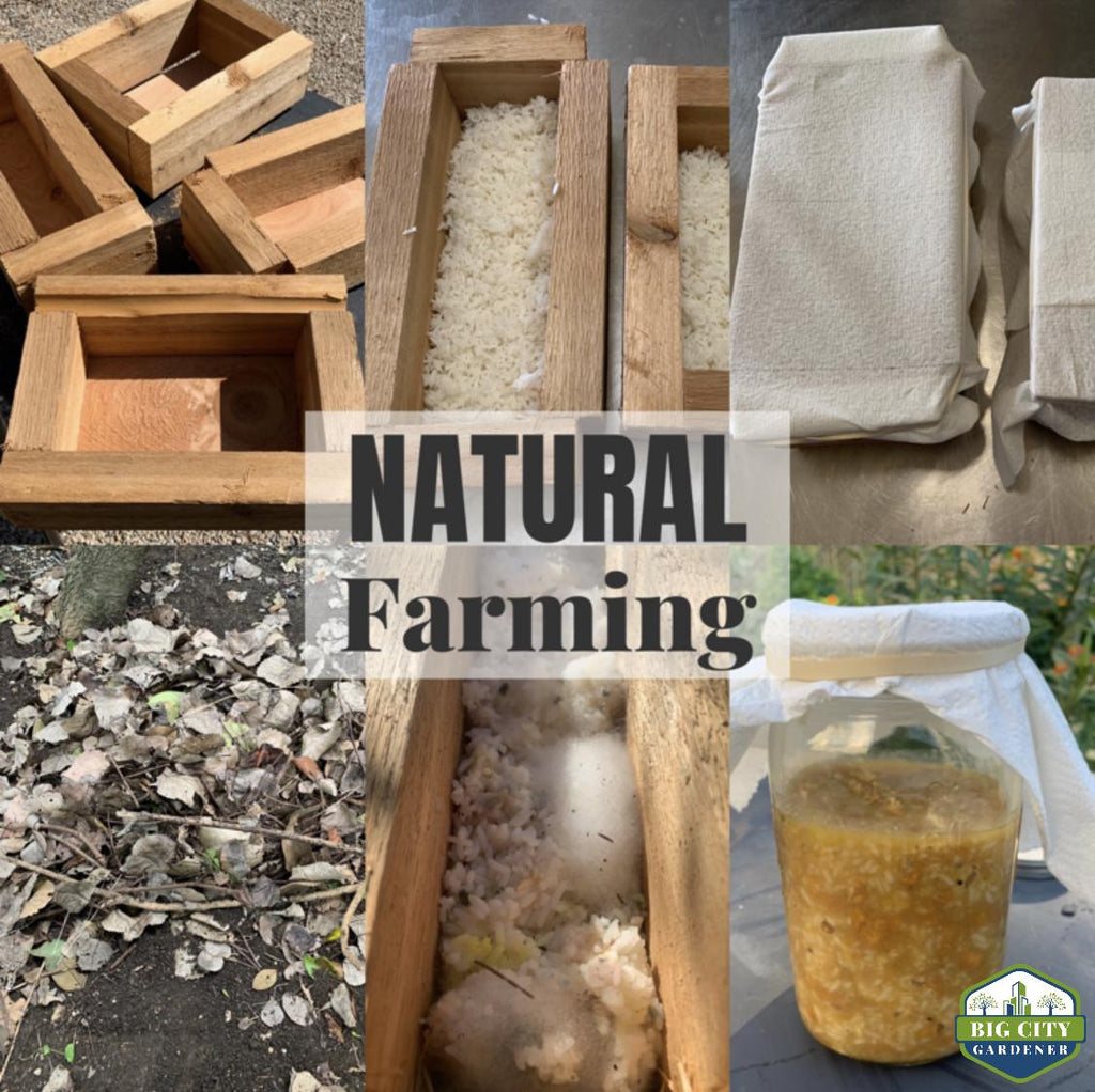 Natural Farming Overview