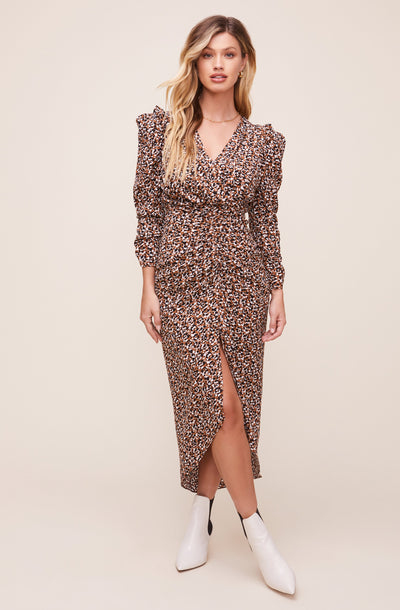 Maven Animal Print Dress