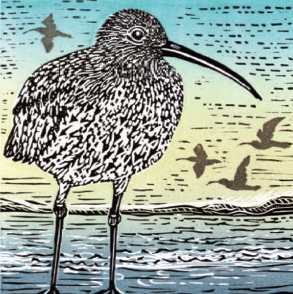 Canns Down Press-Card-Curlew