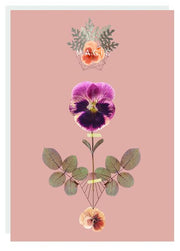 FIREWEED-FOIL CARD-MAGIC PANSY