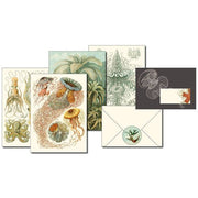 Pepin Press-Letter Writing Set-Art Forms In Nature