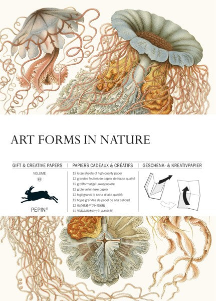 Pepin Press-Gift and Creative Papers Book-Art Forms In Nature