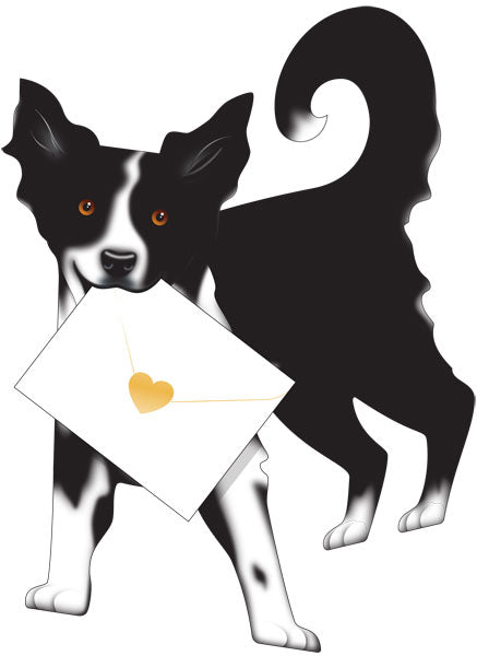 SPECIAL DELIVERY-CARD-DOG-COLLIE