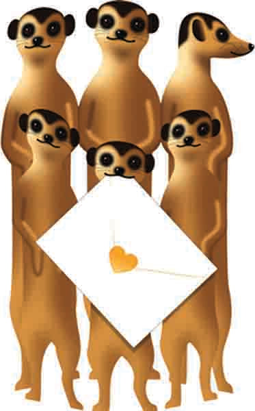 SPECIAL DELIVERY-CARD-MEERKATS