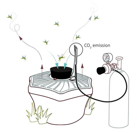 BG-Booster CO2 - Upgrade set to capture all mosquito species - Biogents - Biogents - luxebackyard