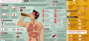 What happens when you drink alcohol on an empty stomach