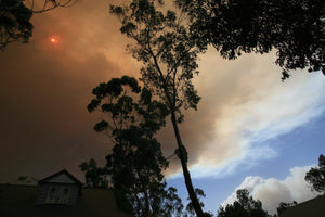 Staying safe this bushfire season