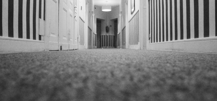 How to dry your wet carpet after water damage - Andatech Distribution
