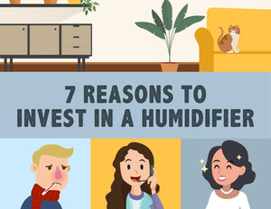 What to consider when buying a humidifier