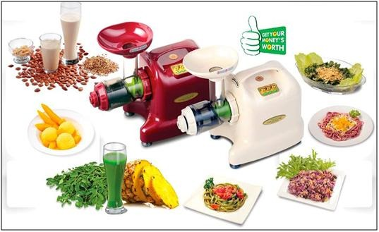 Matstone 6 in 1 Vegetable Juicer
