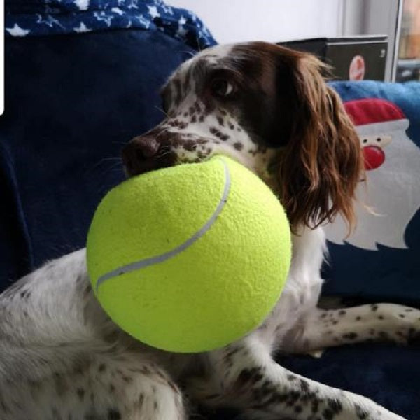 Giant Tennis Ball For Dogs
