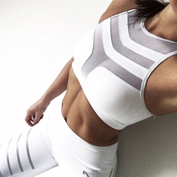 Elite Crop sports bra