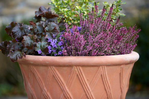 A Beginners Gardening Journey –benefits of handmade terracotta plant pots
