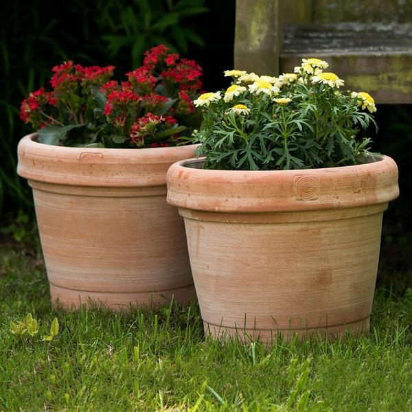 Advantages of clay pots vs plastic pots - Gardenesque