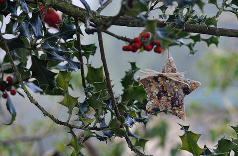 Make your own natural bird feeder Christmas decorations with gardenesque