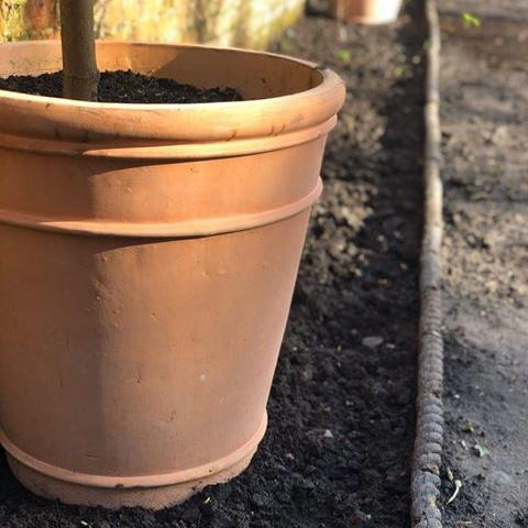 Tullia Terracotta Garden Pot - Gardenesque