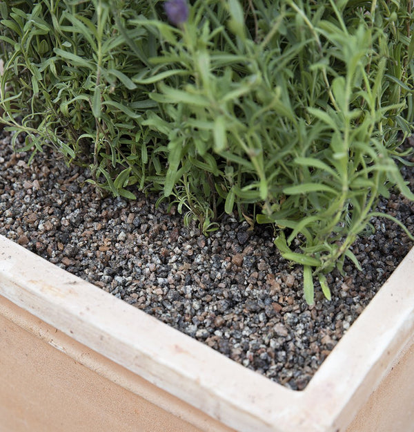 Decorative Coarse Gravel & Pot Toppers - 4mm - Gardenesque