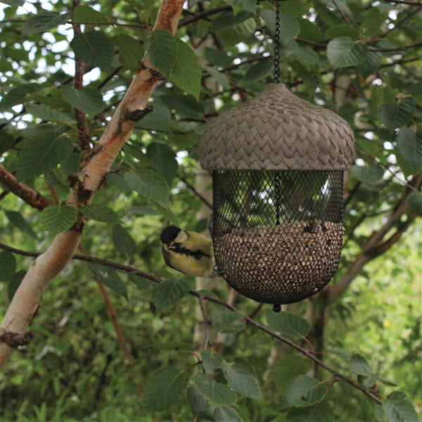 Hanging Acorn Bird Feeder