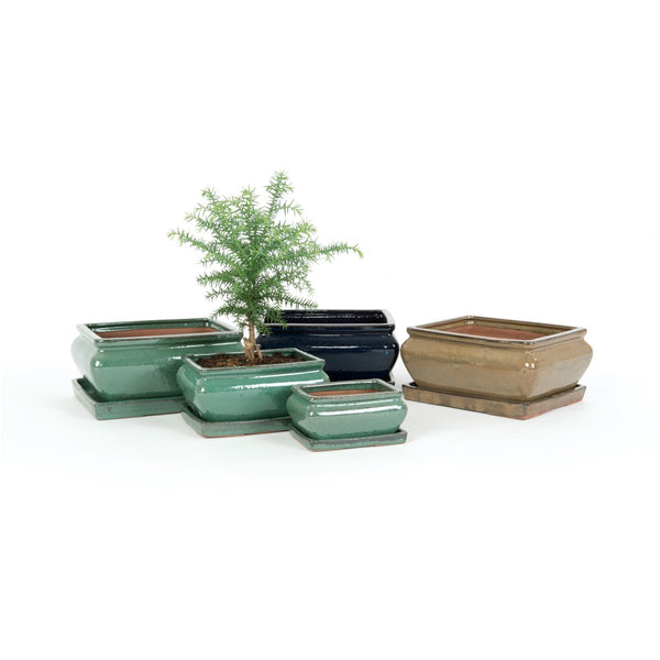 Kijiri Rectangular Bonsai Plant Pot & Saucer Set - 3 Sizes - Gardenesque