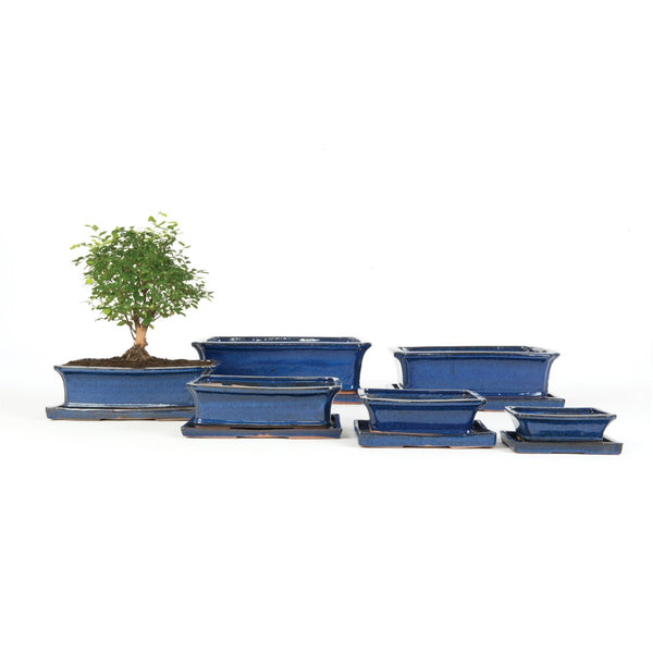 Inoku Rectangular Bonsai Plant Pot & Saucer Set - 6 Sizes - Gardenesque