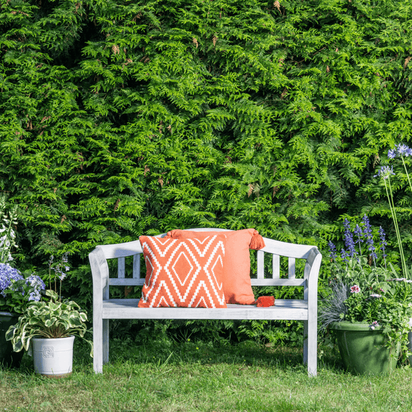 Repton Queen Eucalyptus Wooden Bench - Gardenesque