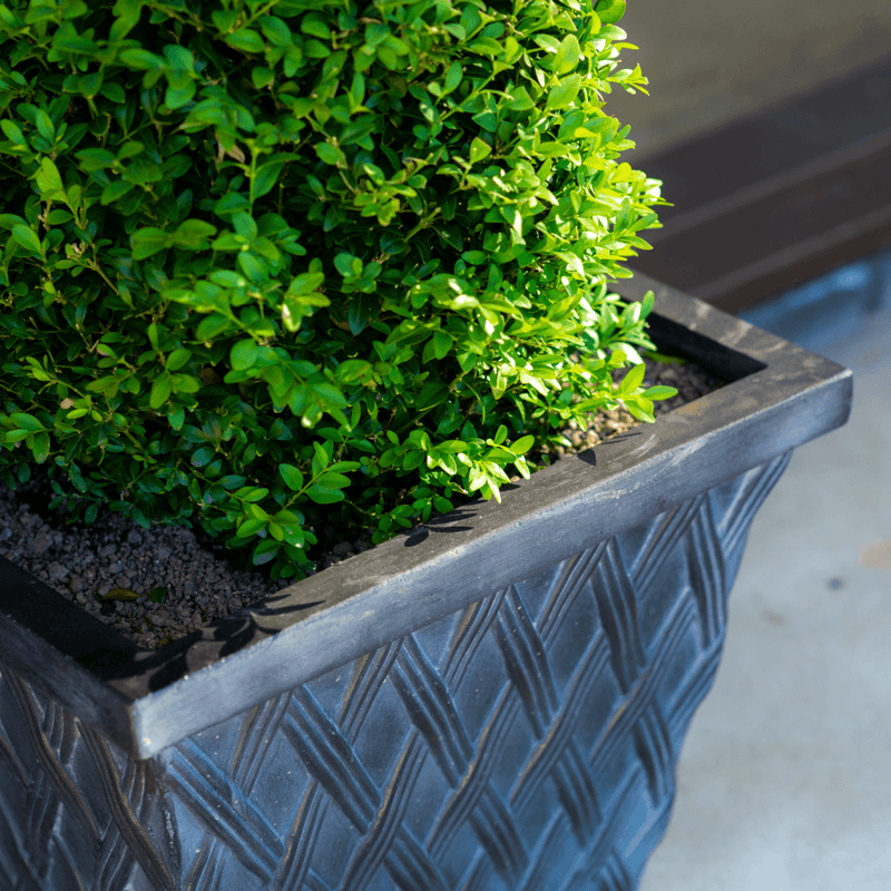 Clayton Square Faux Lead Fibreclay Resin Planter - 2 Sizes - Gardenesque