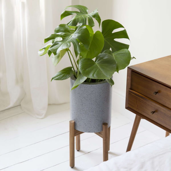 Aina Indoor Plant Pot with Acacia Wood Stand - 2 Sizes - Gardenesque