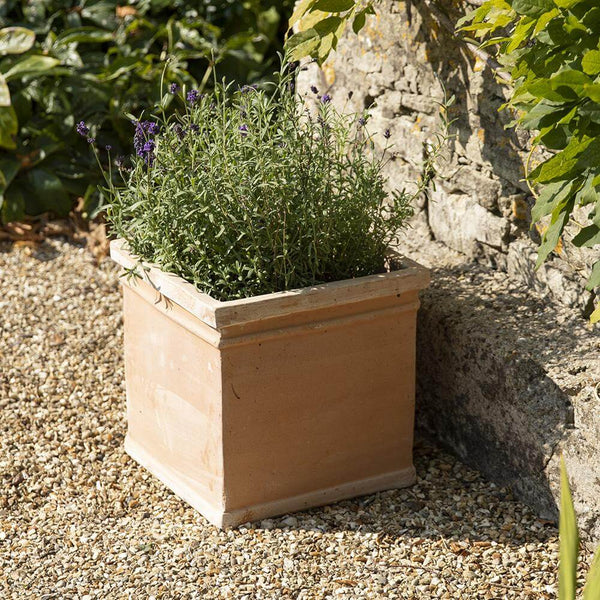 ORSON XL SQUARE TERRACOTTA PLANT POT - 4 Sizes - Gardenesque