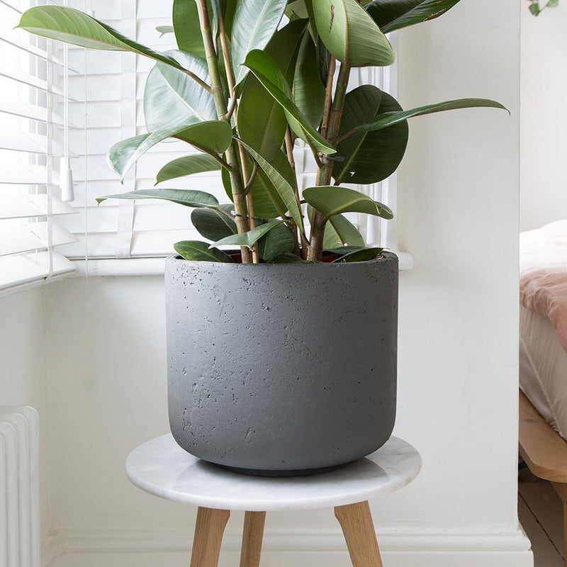Larkin Concrete Indoor Pot Cover - 3 Sizes - Gardenesque