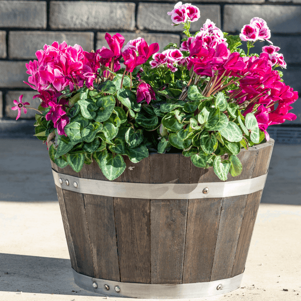 Wooden Whiskey Barrel Planter with Drainage - 2 Sizes - Gardenesque