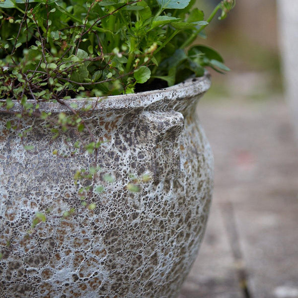 Ancient Collection Frostproof Garden Plant Pot Bowl available gardenesque