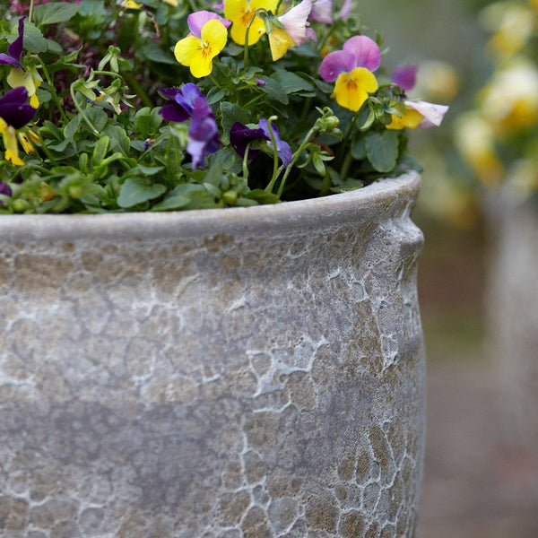 Ancient Collection Frostproof Garden Pot