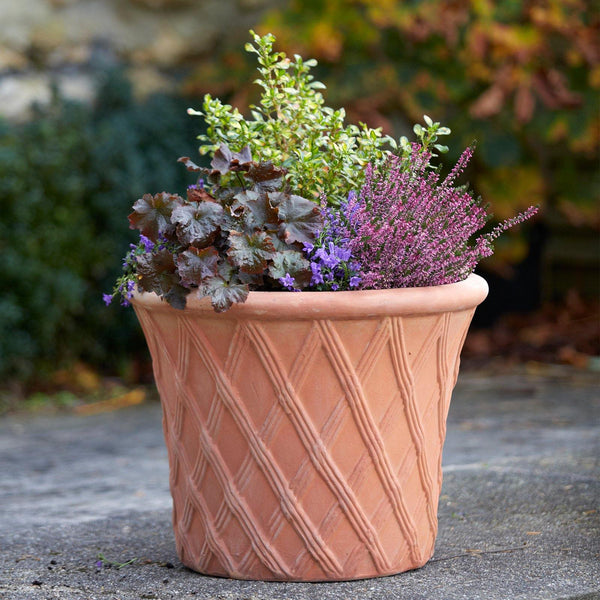 Clayton Round Terracotta Garden Pot - Multiple Sizes available at gardenesque