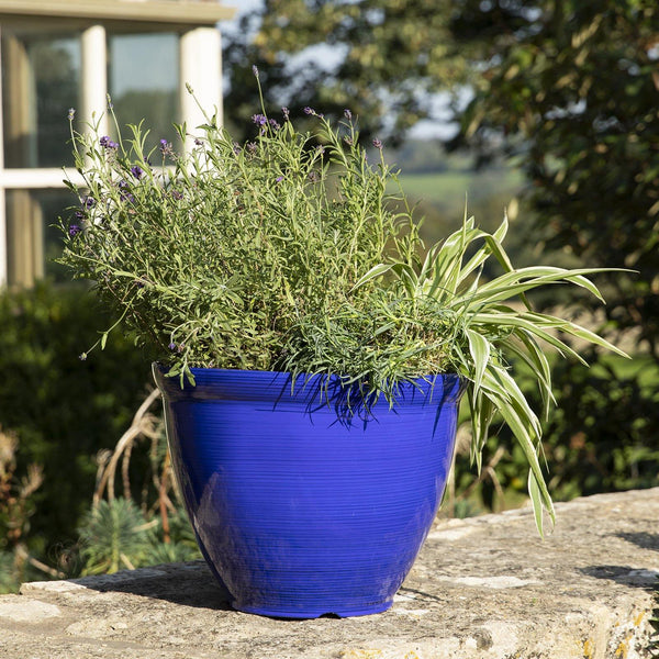 Lightweight recycled plastic plant pot available at Gardenesque
