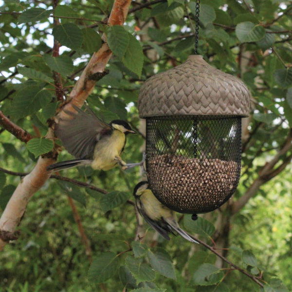 Hanging Acorn Bird Feeder large